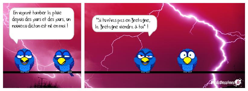 LA PENSÉE DU JOUR DE MISTER BLUES...26