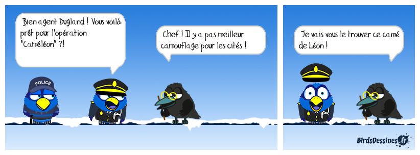OPÉRATION CAMÉLÉON