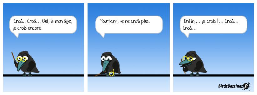 Les corbeaux croassent jusqu'à quel âge ?