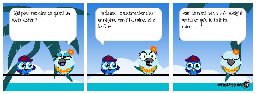 Webmaster, le nouveau régime !