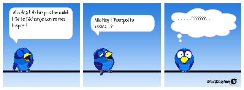 COUP DE FIL