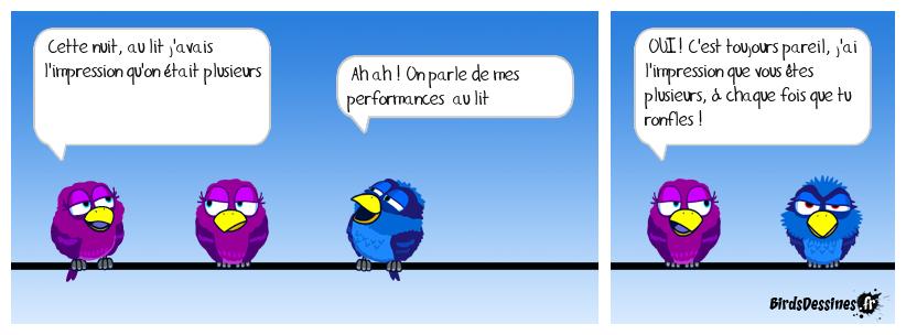 performances nocturnes