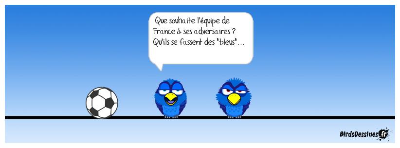 Ah ces... bleus !!!