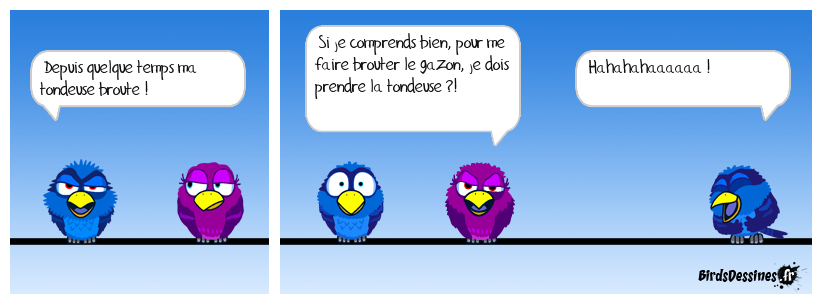 BROUTAGE...AUTRE VERSION