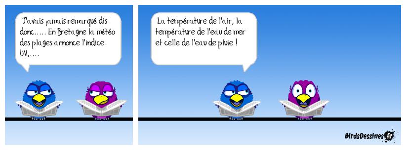 Météo Bretonne !