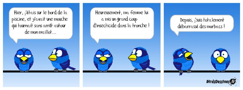 La mouche (suite...)