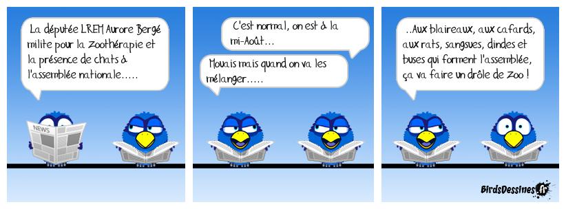 Encore un sujet capital pour le bien-être des français !