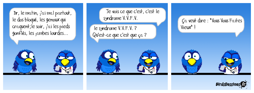La page médicale : le syndrome V.V.F.V.