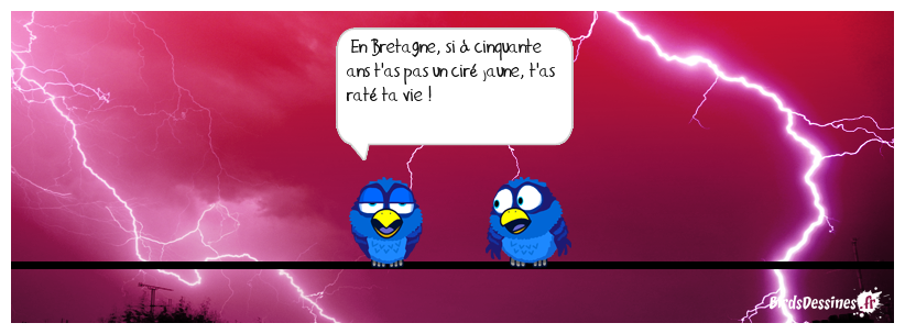 LA PENSÉE DU JOUR DE MISTER BLUES...34