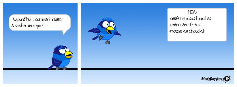 Comment maigrir avec les Birds !