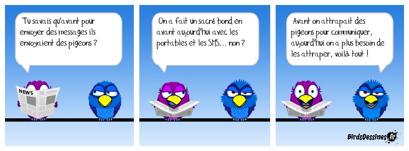 Pigeon l'ancêtre du SMS