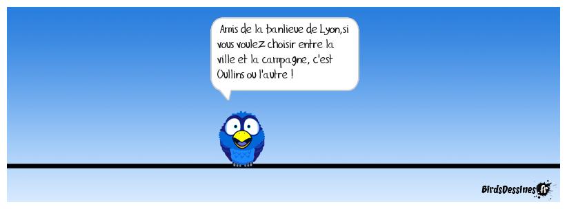 Les Lyonnais