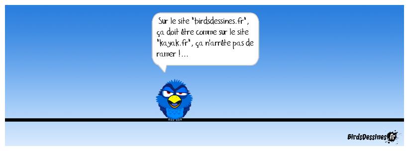 Un bird pas gai !