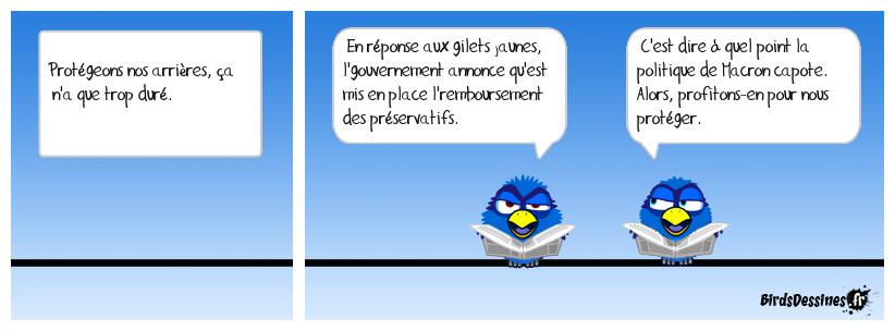 Sodomie gouvernementale
