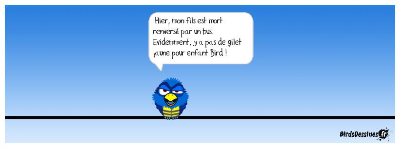 La sécurité chez les Birds