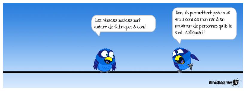 L'utilité des réseaux sociaux.