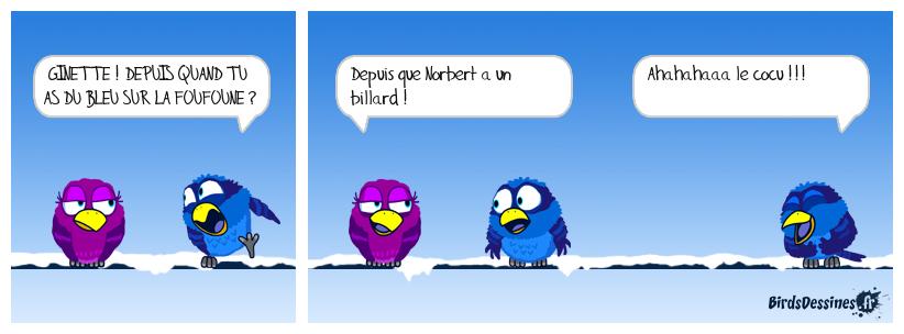 Le billard de Norbert...02