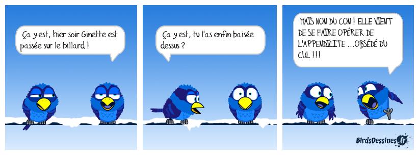 Le billard de Norbert...03