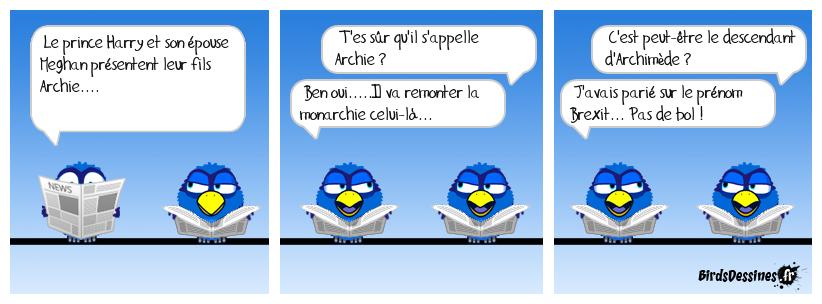 Je vous présente Archie premier !