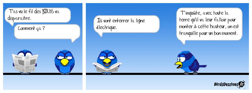 LES GRANDS TRAVAUX DE BIRDSVILLE
