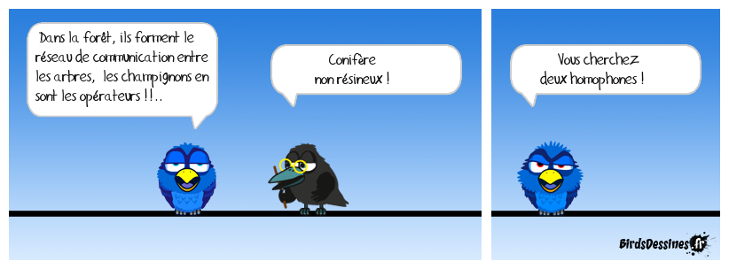 Verbiphone Sauce Sylvaine n° 2  !!..