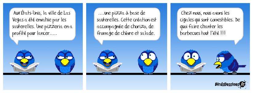 Pizza sauteuse !