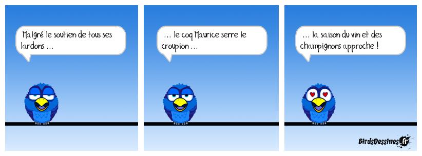 Cocori ... couic !