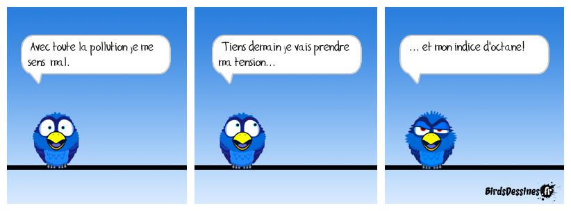 Paradoxal mon cher Birdson