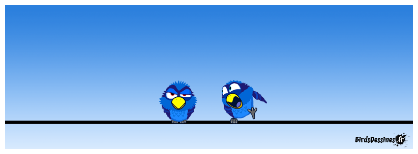 Je ne suis pas expert en oiseau, mais la femelle se trouve à droite.