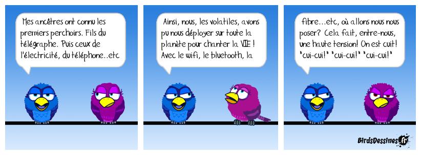 Les oiseaux sans fil sur les branches.