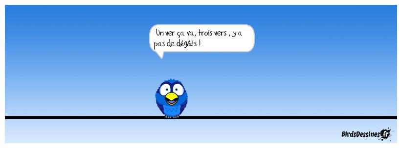 Parole de bird