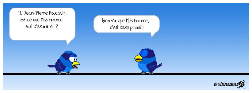 Élection de Miss France