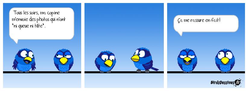 Bird ne rentre pas tous les jours.
