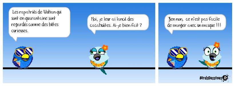 Nouveau zoo !