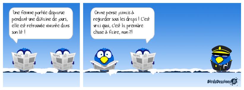 Fait divers en Haute-Garonne