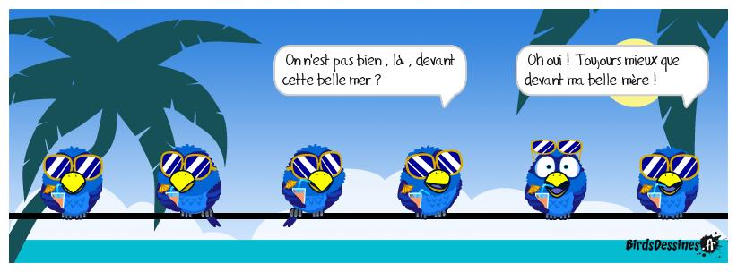 Les vacances des Birds