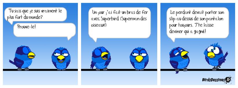 Suuuuuuuper Birdy!