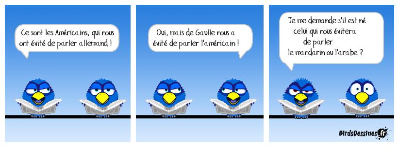 C'est bien connu, le français a un problème de langues