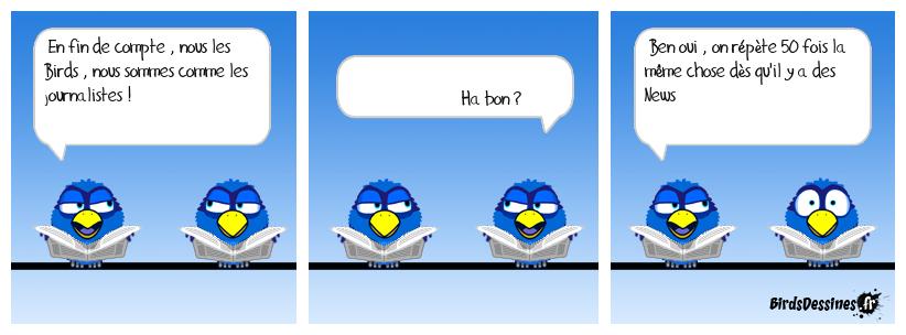 Les Birds sont comme les Médias