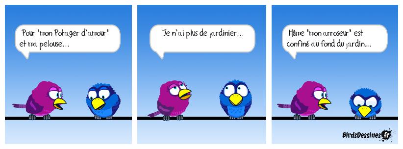 Coronavirus & Potager d'amour...