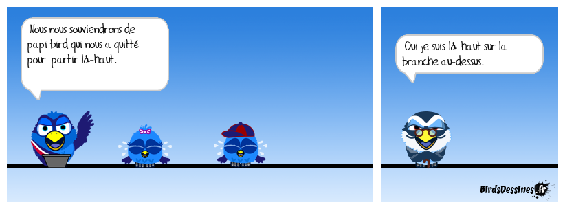 Papi bird ...