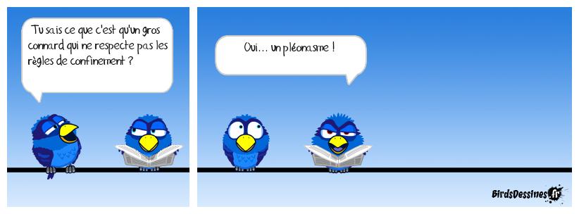 Pléonasme