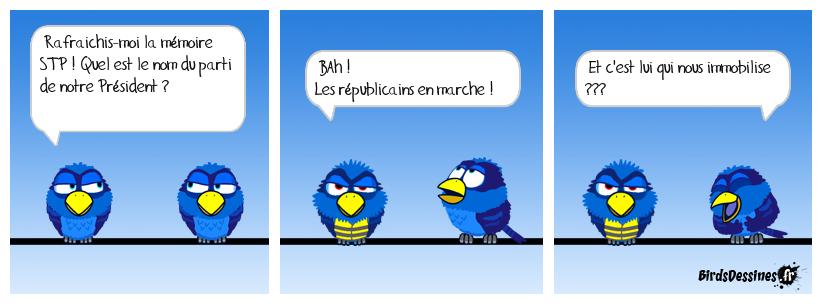 Question pour un bird !