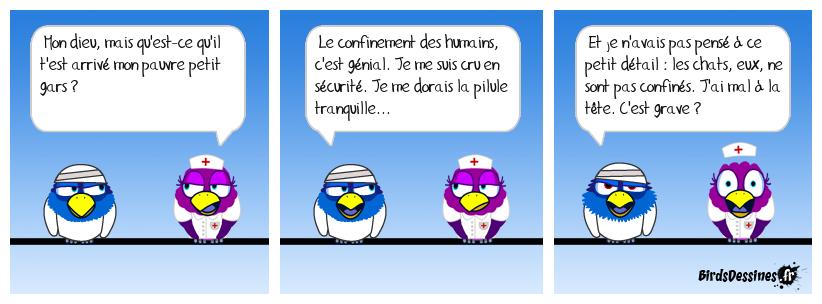chatperlipopette
