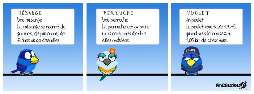 J'apprends à lire avec les oiseaux