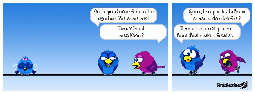 Migration saisonnière 3