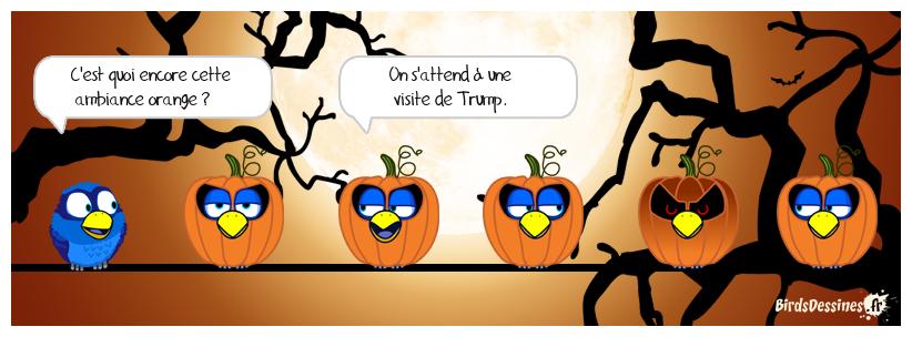 Ambiance orange