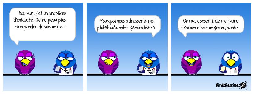 Histoire d'œufs...