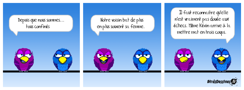 S.O.S. birdettes battues