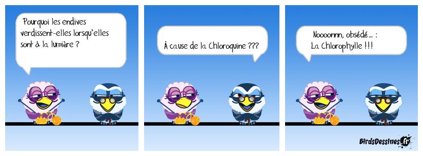 Obsédé de la Chloroquine…